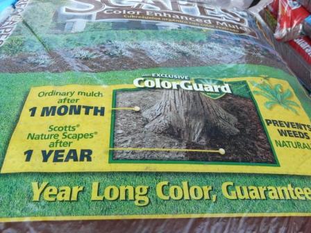 color-guard-cool