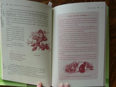 mcdowell-book