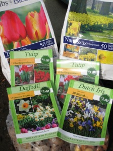 fall flower bulbs